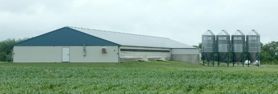 Photo Gallery Of Hog Confinement Buildings By Eps
