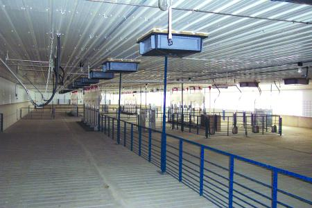 Interior View of an EPS Hog Building System