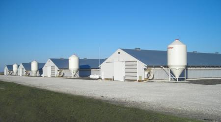 Radintz Turkey Farm