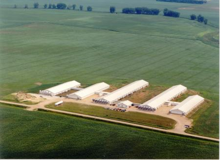 Aerial View of Hog Buildings